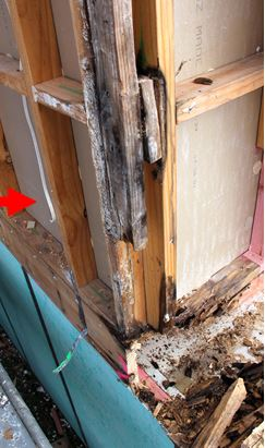 rotted edge from leaky house